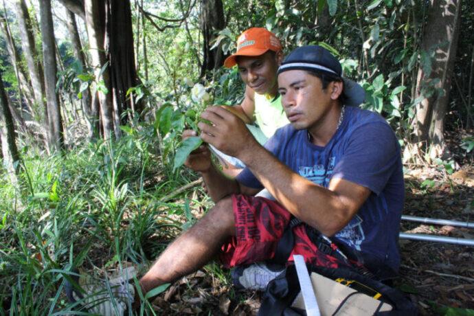 Amazon Ecotourism Trip-men-amazon forest