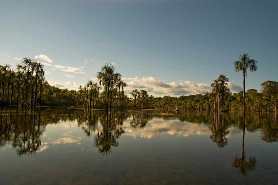Amazon Ecotourism Trip-river-amazon rainforest