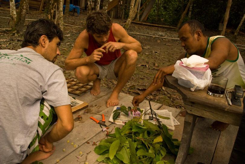 Amazon Ecotourism Trip-working men-amazon forest