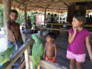 little tourist- kids - parrot