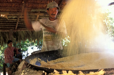 Men working to make Cassava flour