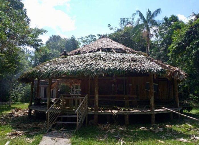 wooden bungalow-amazon forest-ecolodge
